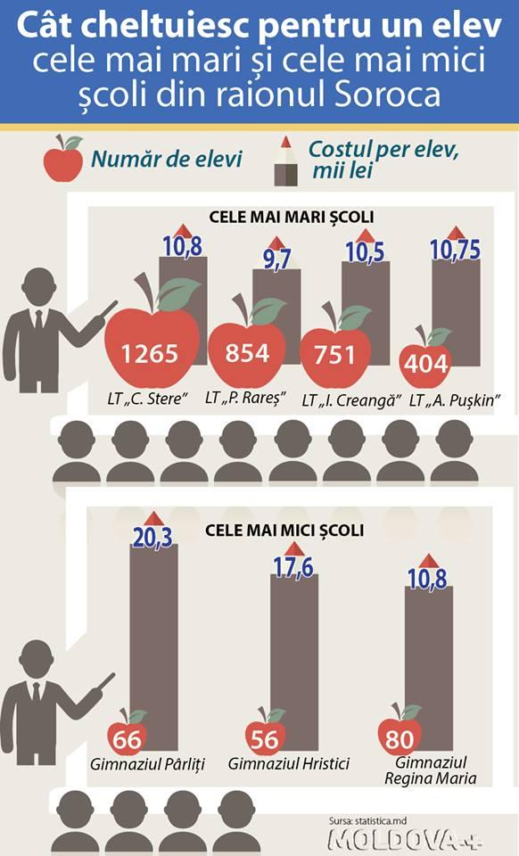 infografic scoli mici
